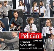 Стильная школа от Pelican'а.